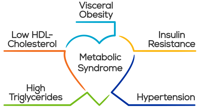 5 factors in Metabolic Syndrome